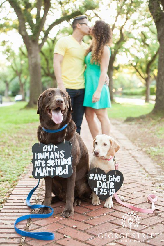 save-the-date-con-los-perros