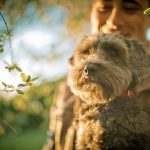 preboda con mascotas 361 - Una Preboda muy Perruna...