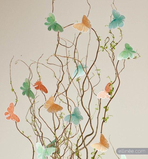 Mariposas.com.mx - Liberación de mariposas, mariposas en