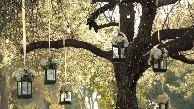 Ideas para decorar un arbol en tu boda diario de una novia for Iluminacion para arboles