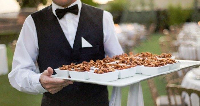 tipos de catering para bodas coctail
