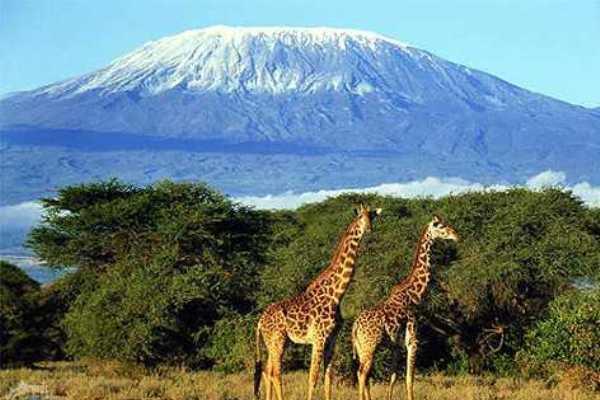 luna de miel en Africa Tanzania