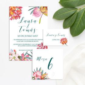 invitaciones para descargar tropical 2