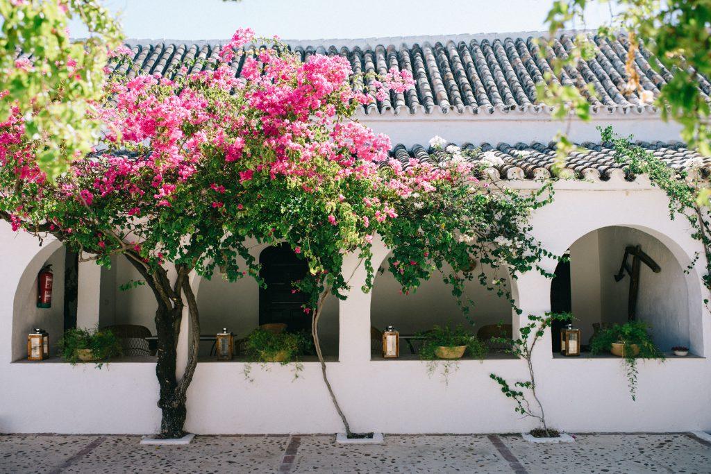 boda civil en hacienda san rafael 44 - La Boda Civil de Géraldine y Jan en Hacienda San Rafael